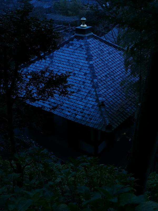 屋根の金色の装飾がアクセントになっている