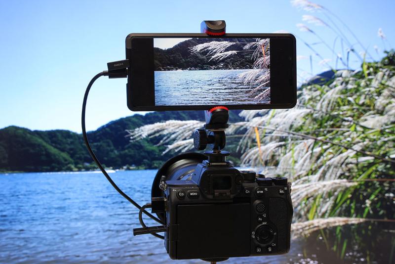 デジタルカメラなどの外付けモニターとして利用できる。拡大して映像の細部を確認することも可能だ。