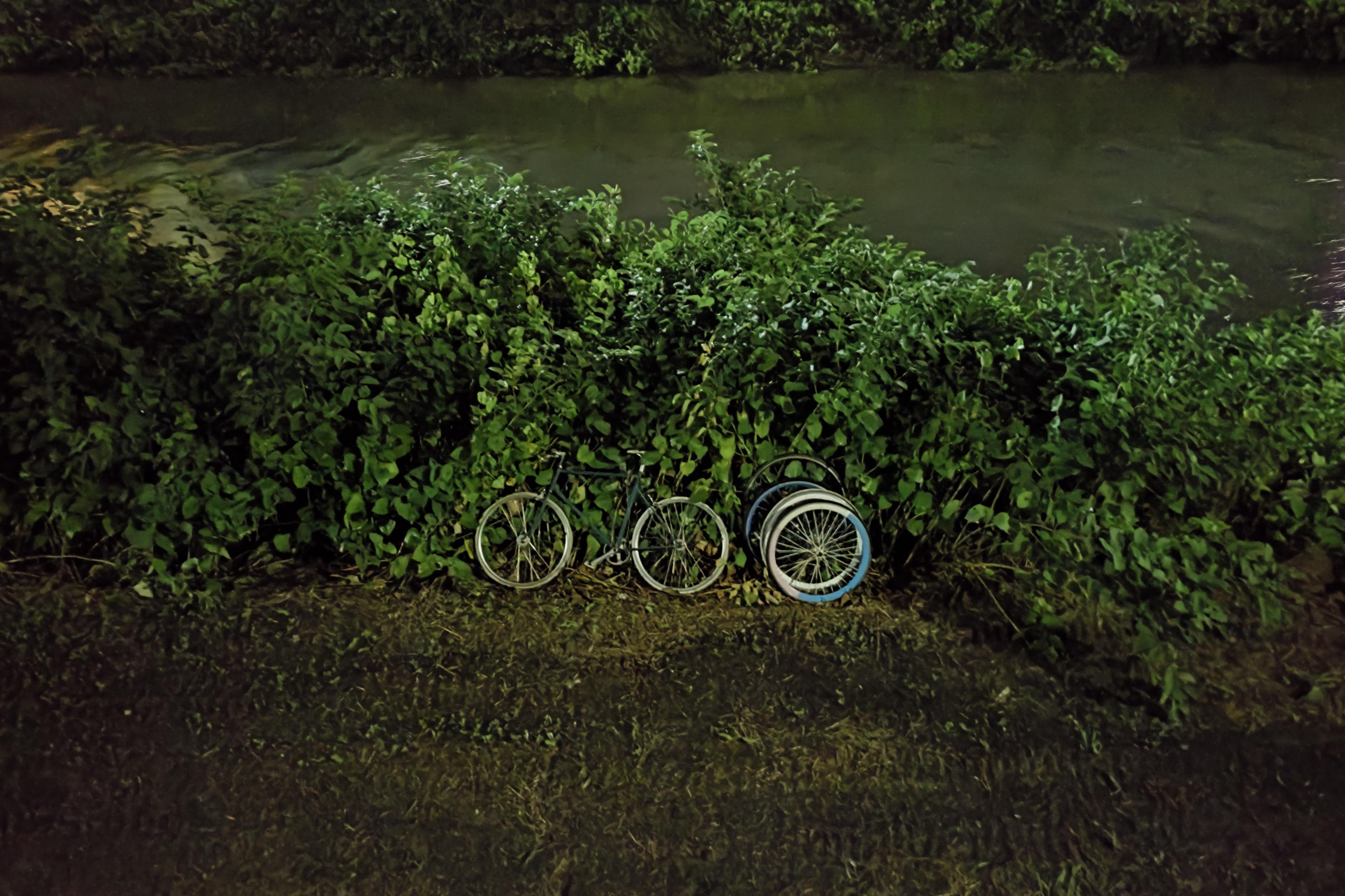 ほぼ真っ暗な河川敷をナイトモードで。投棄されていた自転車がクッキリと浮かび上がった。ISO:1125