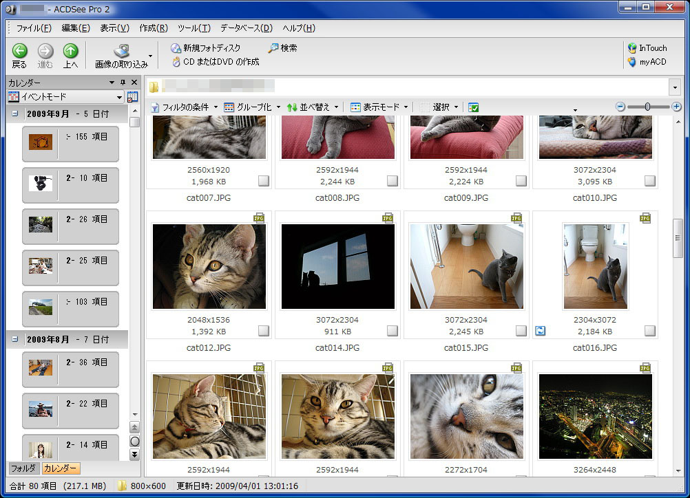 ACDSee Pro 2 Photo Managerの表示例。実際はもっと大きなウィンドウで使用している。RAWデータを多用しないならACDSee Photo Manager 2009がオススメですな。