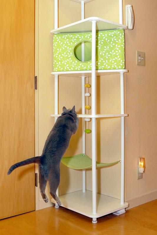 (1)猫タワーに飛び乗るニャ。ニャンプ!!