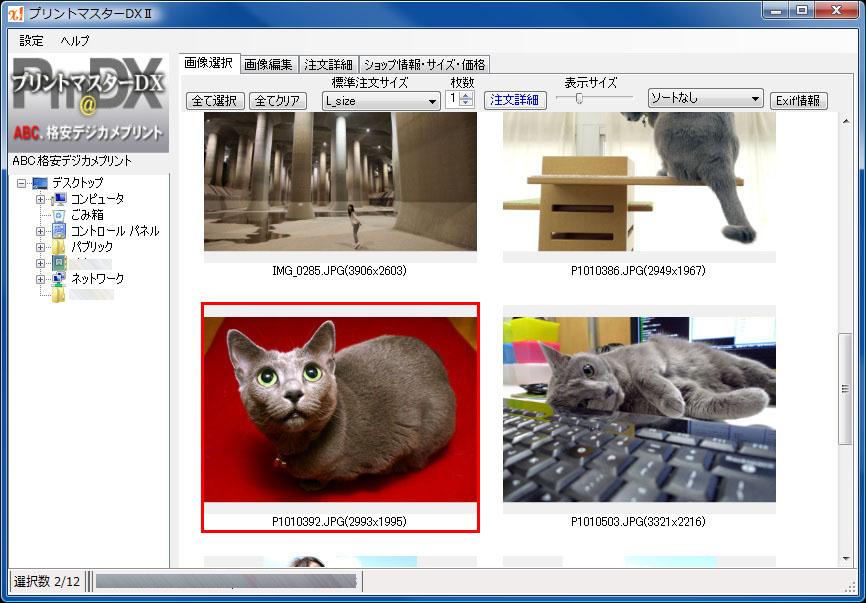 プリントマスターDX2。手持ちの写真を指定し、オンラインでプリントの注文を行える。プリントショップ「ABC.格安デジカメプリント」を利用するためのソフトだ