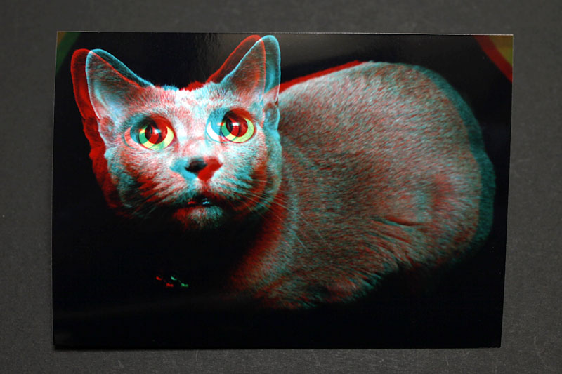 3Dフォト変換機能で処理した写真をプリント注文すると、このようなプリントが送られてくる。これを赤青メガネで眺めるわけですな