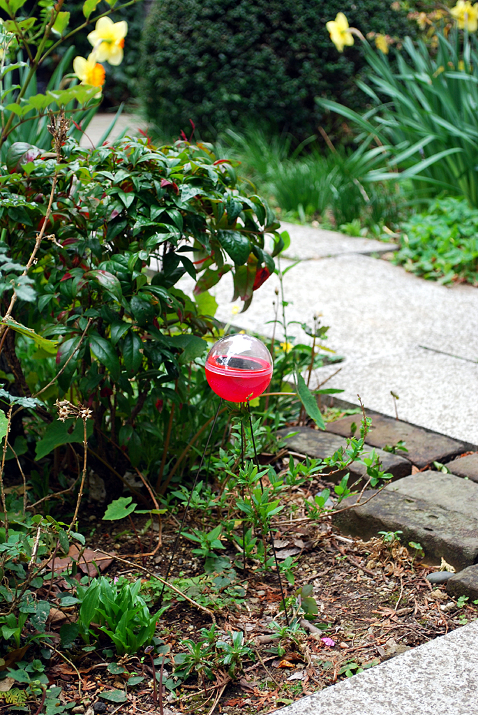 庭先に置いたソーラーボールライト。昼間見てもなかなか可愛らしい