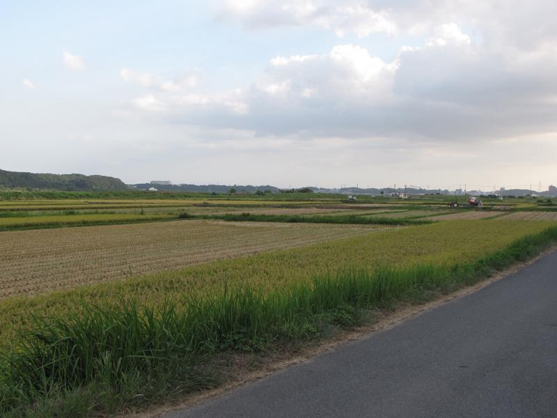 周辺は田畑で目標物が少ないため、来場時は地図確認が必須。営業時間にも注意を