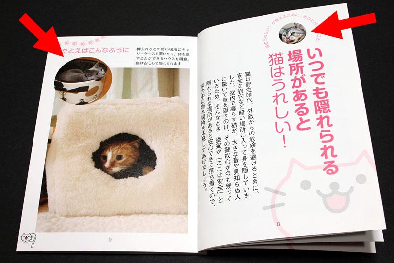 件の小冊子の内部。ひと見開きのなかに2枚載ることも。約66%の拙宅猫濃度となったりしている