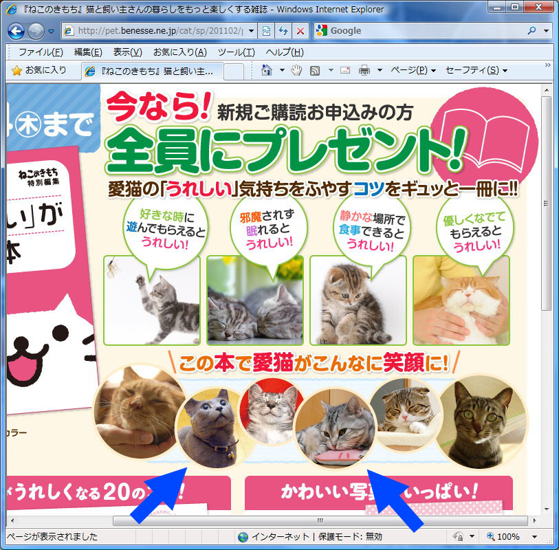 ウェブページにも拙宅猫ちゃんズ登場。具体的には矢印の猫ちゃんなのであり最強にニャわいい