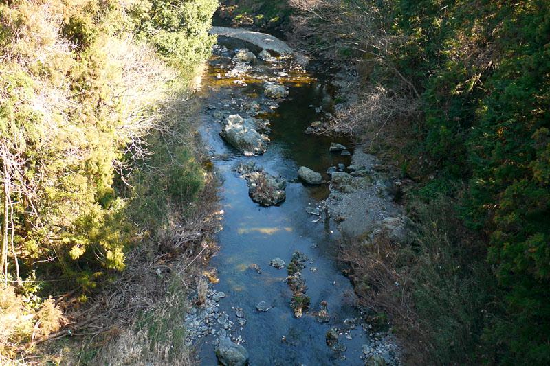 下には綺麗な渓流が。釣れそうだニャ~