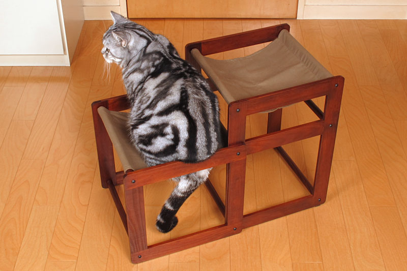 (6)座り直したら尻尾がいい雰囲気になって満足したニャ