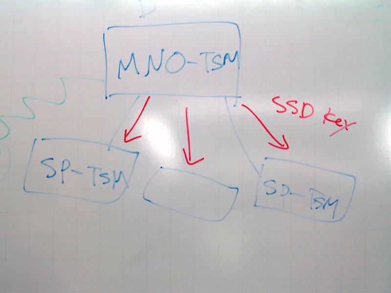 阪東氏が示したMNO-TSMとSP-TSMの関係図