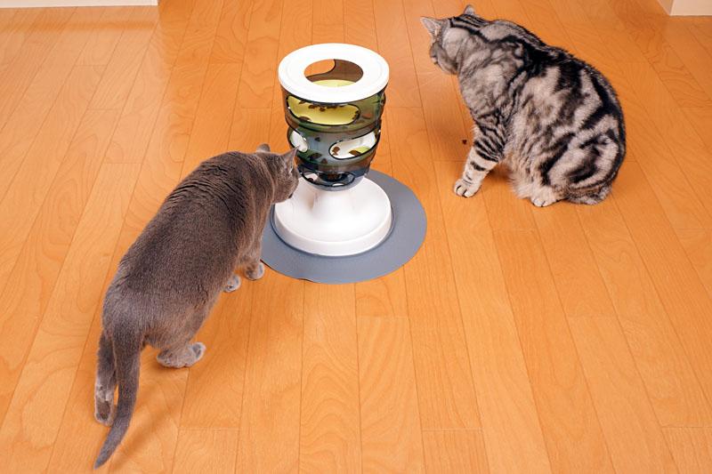 うかちゃんは猫だからLEDに興味がありません。ぼぼぼ、ぼくも猫なのでササミと猫缶とシーバに興味があります。ニャ。ニャ。みたいな。