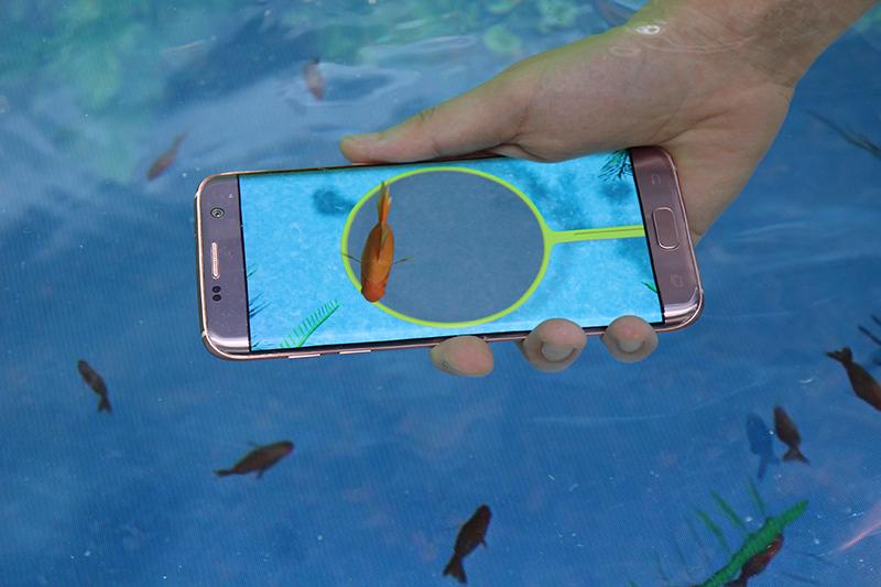 デジタル金魚すくい。内蔵センサーで端末が水中にあるのを感知すると金魚がでてくる仕組みだという