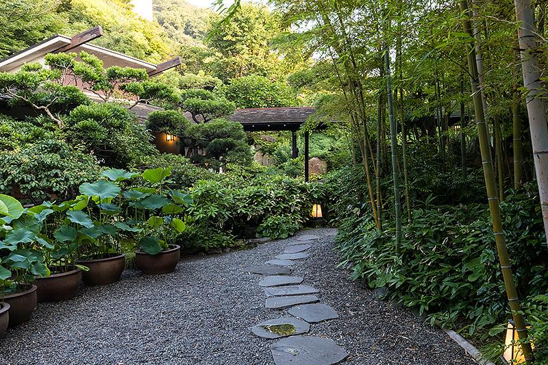 日影茶屋の庭
