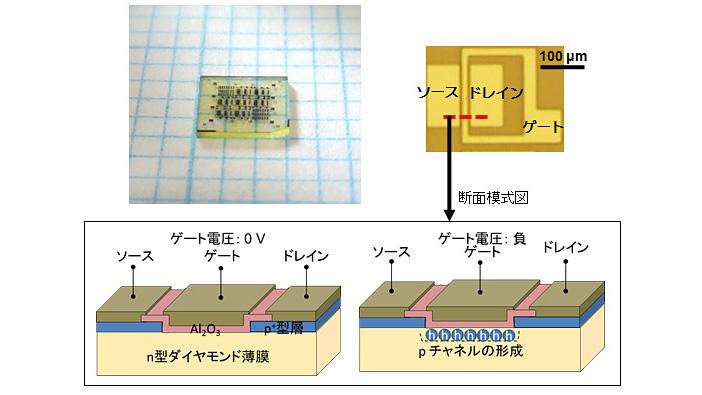 反転層チャネルダイヤモンドMOSFET(左上)とその中の一素子を光学顕微鏡で拡大した画像(右上)、赤い破線部の断面模式図(下)