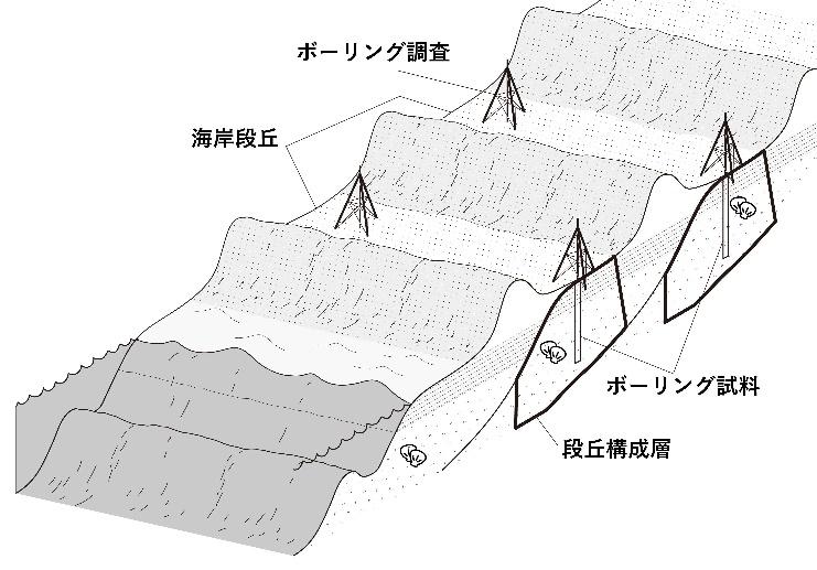 稠密ボーリング調査の概念図。それぞれの段丘面について複数箇所のボーリング(掘削)調査を行ない地下に埋没した段丘構成層から試料を採取