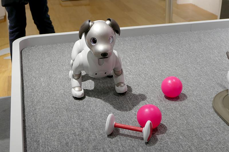 aiboが見ているものは専用おもちゃだけではない