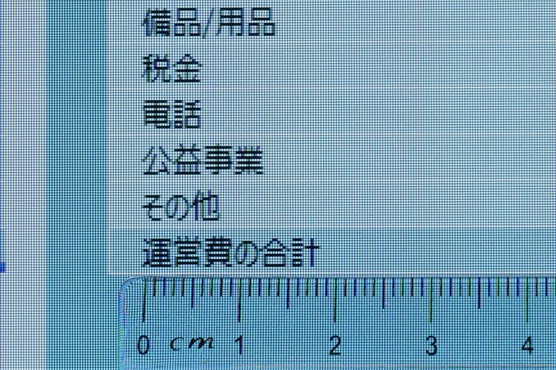 Excelでフォントサイズが11ポイントでも漢字は3mmほどの大きさとなり、視認性は抜群だ