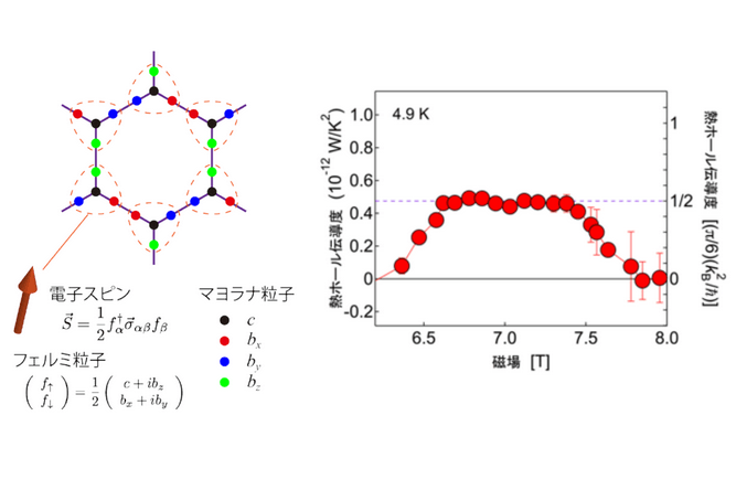 """キタエフ模型のイメージ図(左)。蜂の巣格子の格子点上の電子スピンが複数のマヨラナ粒子に分裂する<br>α-RuCl<span class=""""em sub"""">3</span>の熱ホール伝導度の磁場依存性(右)。磁場を変化させると、ある磁場範囲で熱ホール伝導度が量子化熱伝導度(=(π/6)(k<span class=""""em sub"""">B</span><span class=""""em sup"""">2</span>/ħ))の1/2倍で一定となり、半整数量子化が観測された"""