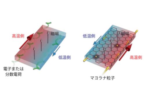 電子・分数電荷による量子ホール状態(左)、およびマヨラナ粒子による量子ホール状態における熱ホール効果のイメージ図(右)。試料の端(エッジ)に沿ってエネルギー散逸がなくトポロジカルに保護されたエッジ熱流が流れ、電子や分数電荷、または電子スピンの分裂によって生じたマヨラナ粒子によってエッジ熱流が運ばれる