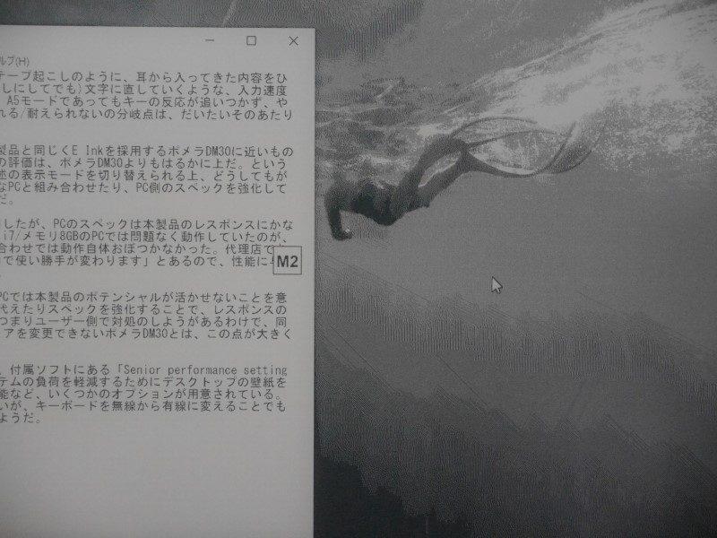 M1(2値)、M2(16階調)、M3(グレースケール)を切り替えたところ。画面の中央にモード名が表示されている