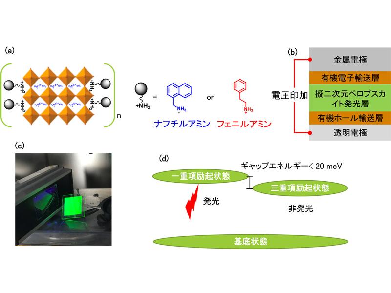 (a)擬二次元ペロブスカイトの構造、(b)研究で用いられたペロブスカイトLEDの構造、(c)紫外線照射によって形成された一重項励起状態が発光する様子、(d)ペロブスカイトLED内部での発光の仕組み