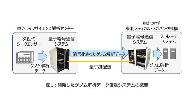 研究グループが開発したゲノム解析データ伝送システムの概要