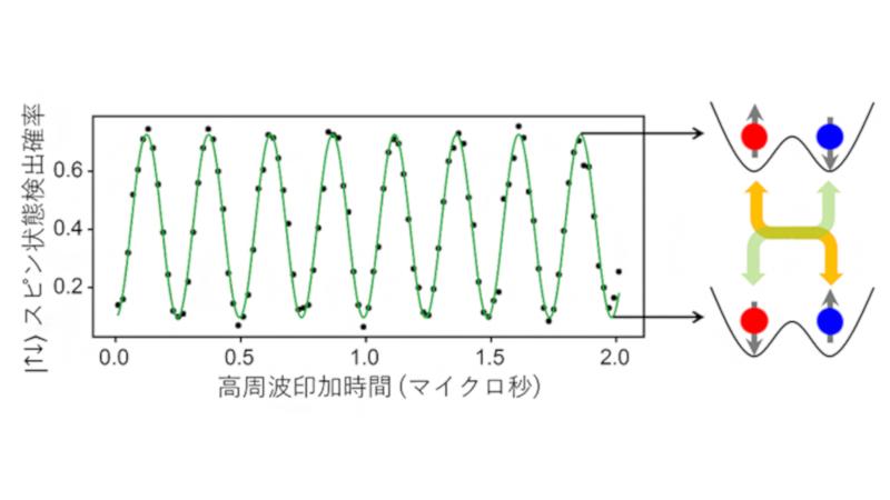 2つのスピン状態の間のラビ振動の測定結果