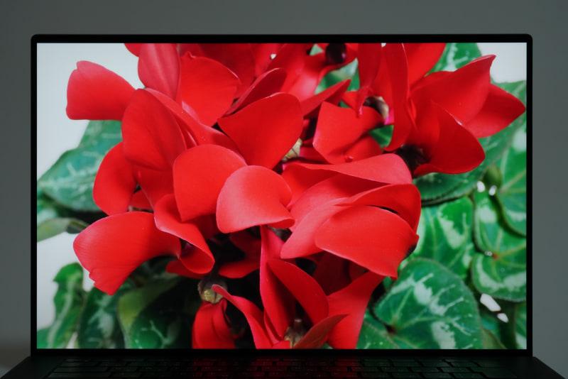 Adobe RGBカバー率100%が謳われている15.6型4K+ WVA液晶ディスプレイはRAWデータの現像用途にもってこいだ