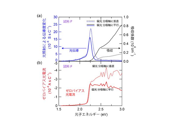 光伝導度とシフト電流に対する表面散乱の影響の違い