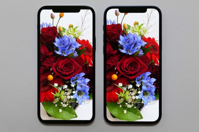 左がiPhone 12 Pro、右がiPhone 12。「明るさの自動調節」と、環境光に応じて発色を調整する「True Tone」を有効にしていれば、ほぼ同じ画が表示される