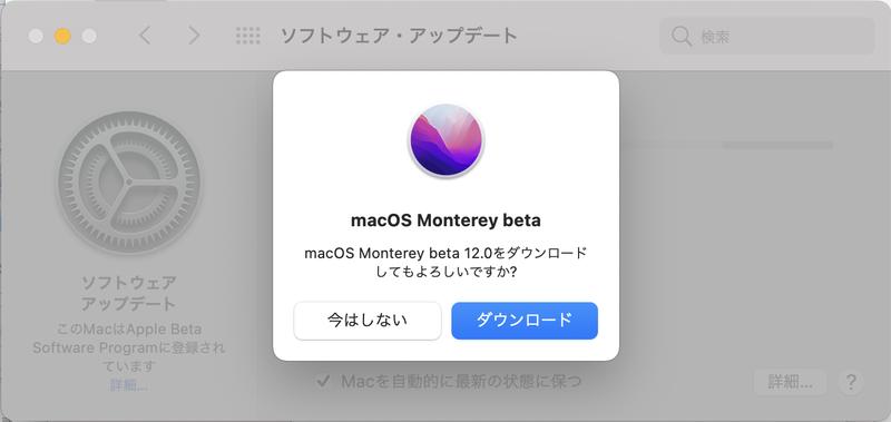 「システム環境設定」の[ソフトウェア・アップデート]から「macOS Monterey beta」をダウンロードします。原稿執筆時点のバージョンでは容量が11.73GBありました。時間に余裕のあるときに作業することをおすすめします