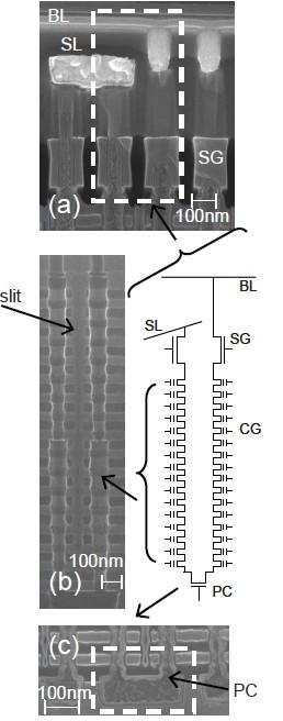 試作したメモリセルアレイの断面を顕微鏡で観察した像と、メモリセルアレイの回路