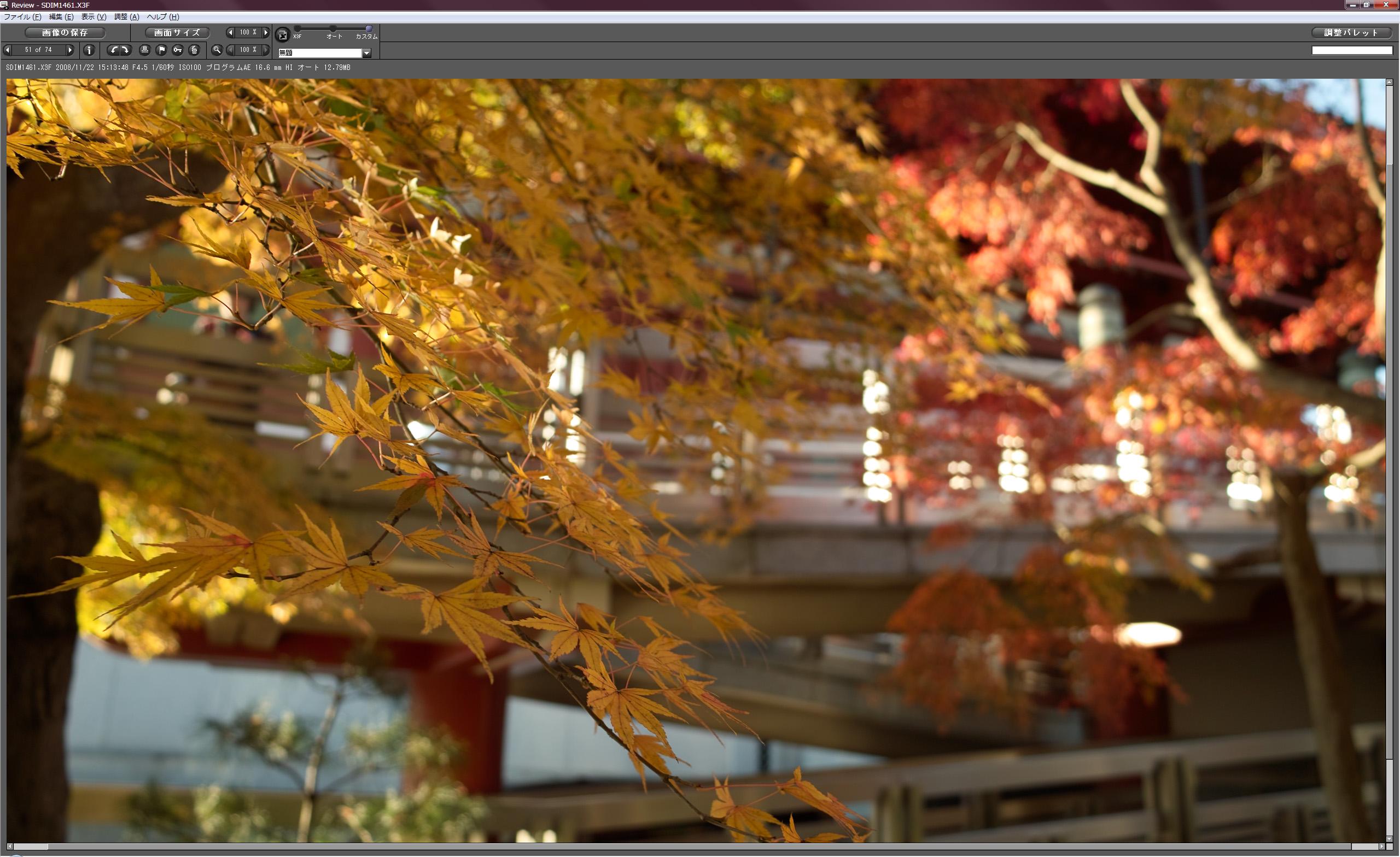 写真を現像する際、原寸表示においても中央部分が表示されるためピントやブレを見極めやすい