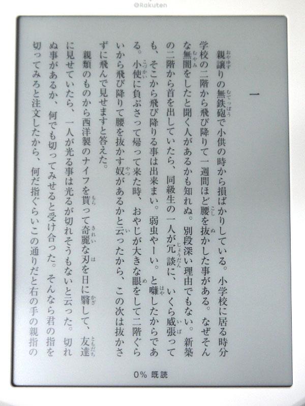 表紙サムネイルをタップして本を表示したところ。画面の左右をタップもしくはスワイプするとページをめくることができる