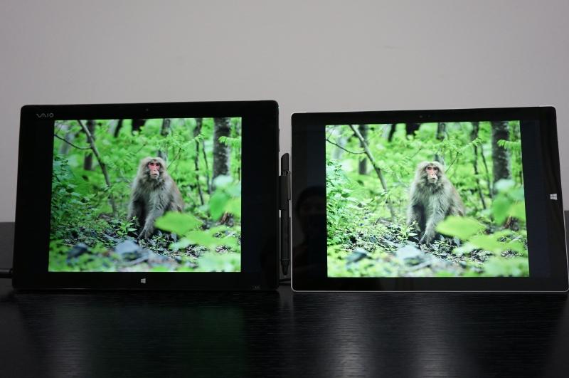同じ比較。左側のVAIOプロトタイプの方が猿が立体的に見える。ディスプレイの色域の違いでこれだけの違いがでてくる