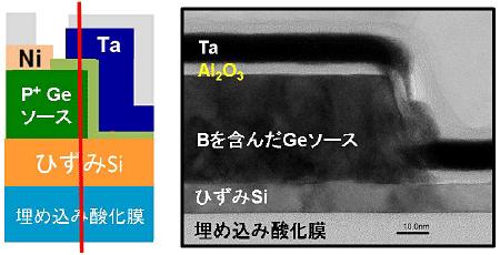 左図は試作した素子の概念図、右は左図の赤線部分の断面透過顕微鏡写真