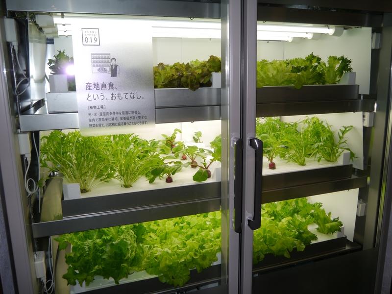 植物工場も展示。光、水、温度、湿度を最適に制御。安全な野菜を育てる