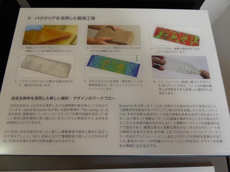 バクテリアを使った製造工程のコンセプト