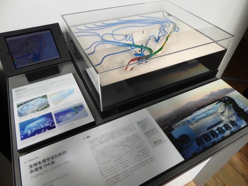 日本設計による「生物を見せるための水流」