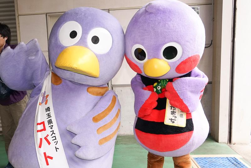 こちらは、埼玉県のマスコットキャラクター 「コバトン」(左)と「さいたまっち」(右)