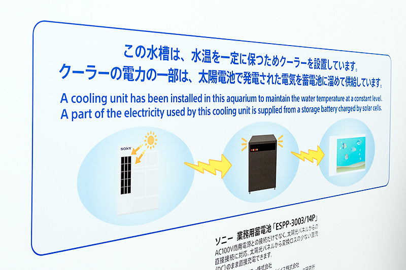 太陽電池とソニー製業務用蓄電システムを活用して水槽の電力を供給