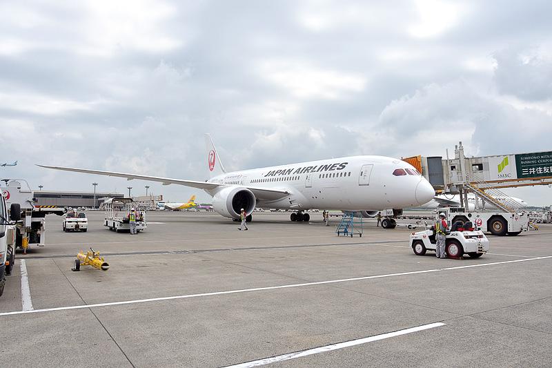 体操女子日本代表選手団を乗せたJL012便(ボーイング787-8型機)