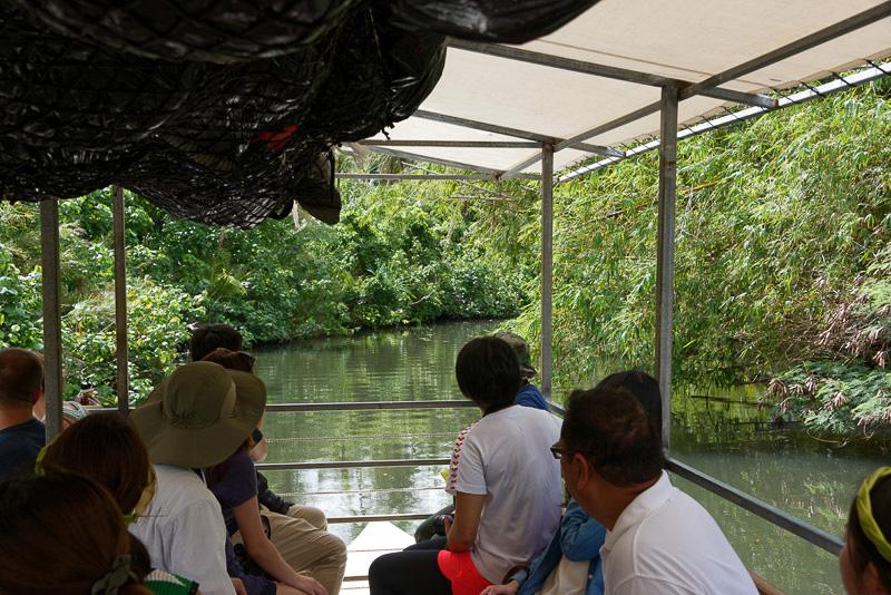 さらに川上へ進むと川幅は狭まり、陸には大きなカニが
