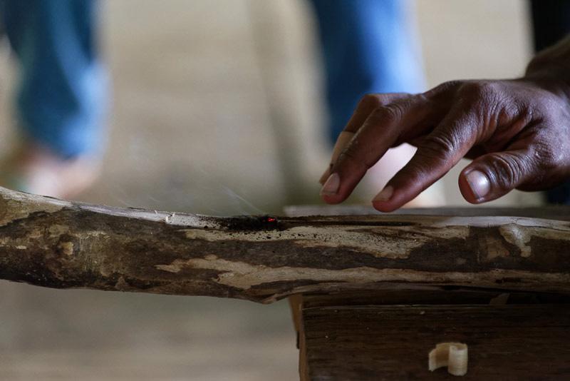 ガイドが火おこしの手本を見せる。両手でしっかり木の棒を握り、力を込めて枝にこすりつけると……火種ができた