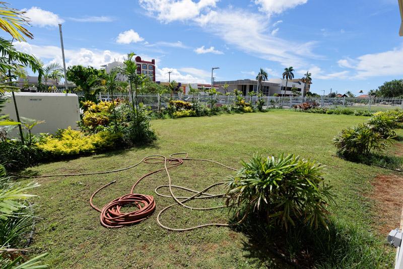 裏庭にはグアムならではの植物がたっぷり植えられるという