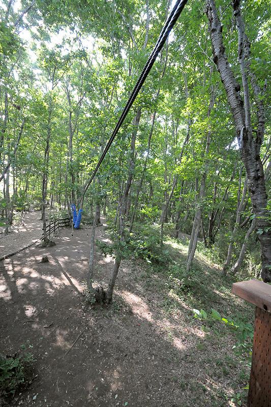 約20m、2本のロープを伝ってデッキから滑走する「スパイダーロープ」