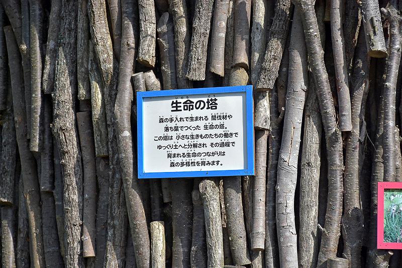 生命の広場にそびえ立つ「生命の塔」。間伐材や落ち葉で作られている