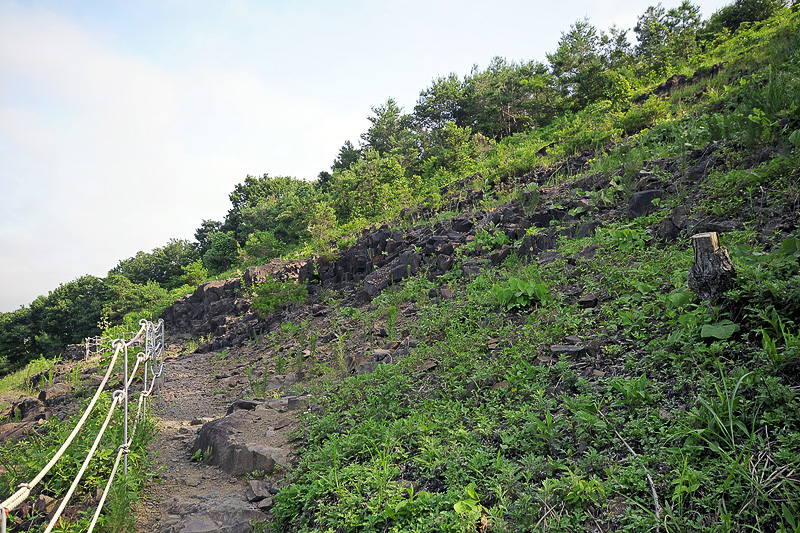 岩肌が露出した道もある。この山は岩山で、表面に土ができ、これだけの木々が茂ったという。この岩肌はトライアルレースにも使われたという