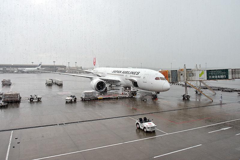 選手団を乗せたJL12便(ボーイング 787-8型機)
