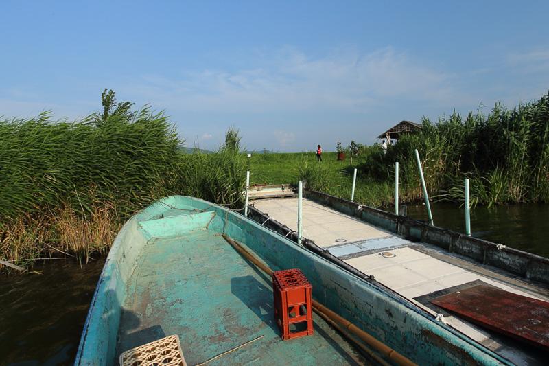 田植えも収穫もすべて船で行き来し作業します。農機具を運ぶのも大変そうです